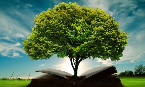 tree on book
